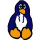 Pinguinzubehör